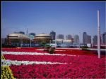 Zhengzhou Travel