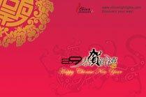 2009 Spring Festival