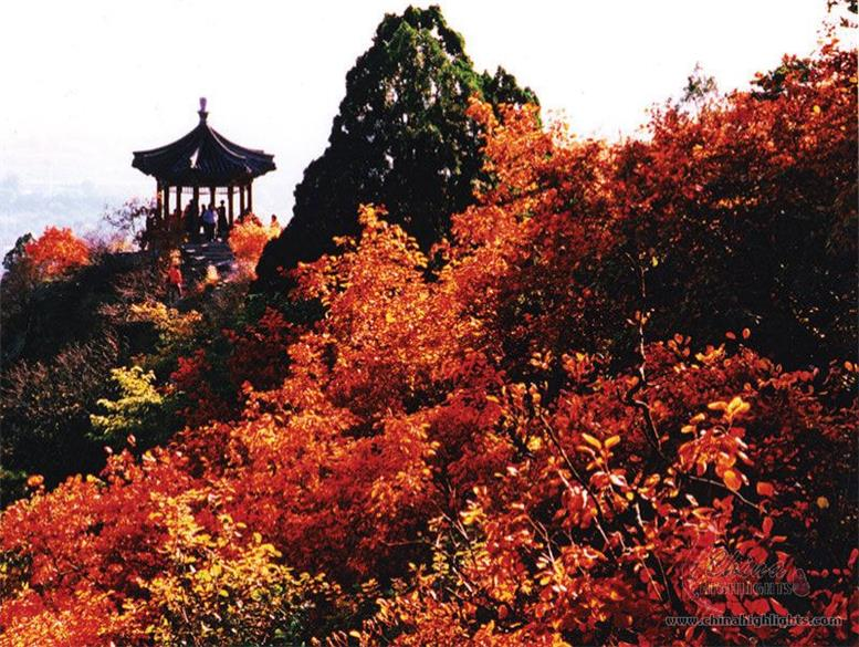 Beautiful autumn leaves on Fragrant Hill