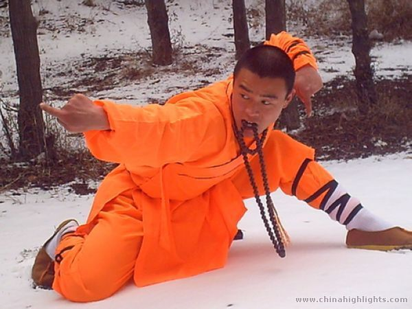 Shaolin Kung Fu Guide for Android Free Download - 9Apps